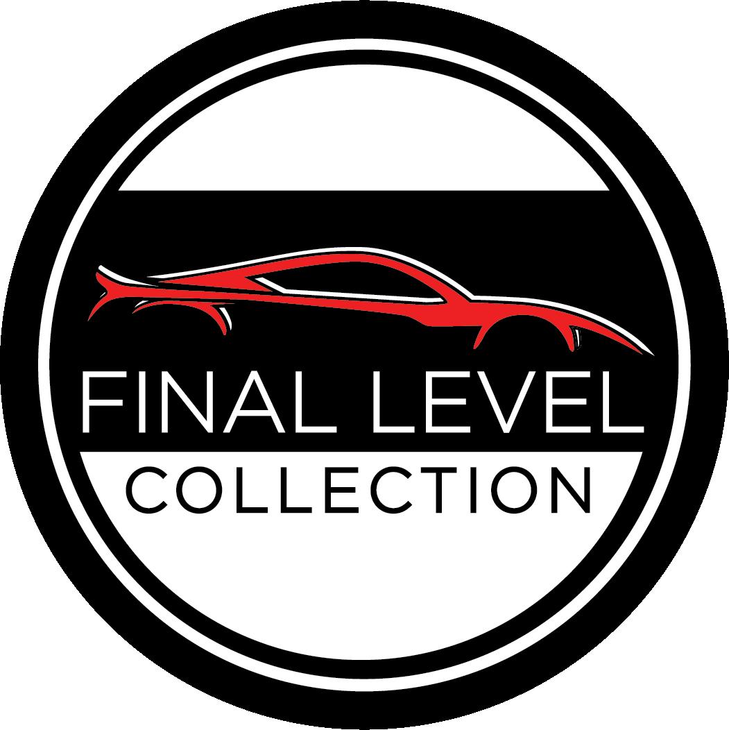 Final_Level_Logo_Concepts_final